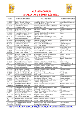 alp anaokulu aralık ayı yemek listesi