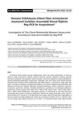 Hastane Enfeksiyonu Etkeni Olan Acinetobacter baumannii İzolatları