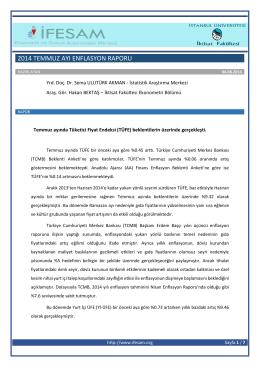 2014 temmuz ayı enflasyon raporu