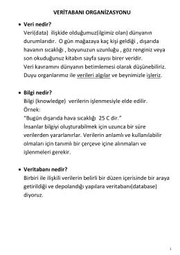 veritabani_organizasyonu_ders_notu