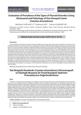 Tek Hörgüçlü Develerde (Camelus dromedarius) Ultrasonografi ve