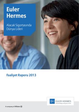 2013 - Faaliyet Raporu