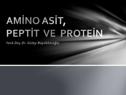 Diğer proteinler