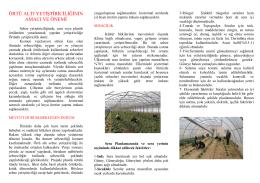 Örtüaltı Yetiştiriciliği - Ankara İl Gıda Tarım ve Hayvancılık Müdürlüğü