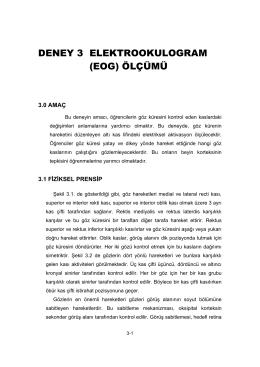 DENEY 3 ELEKTROOKULOGRAM (EOG) ÖLÇÜMÜ