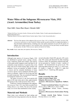 Water Mites of the Subgenus Micruracarus Viets, 1911 (Acari