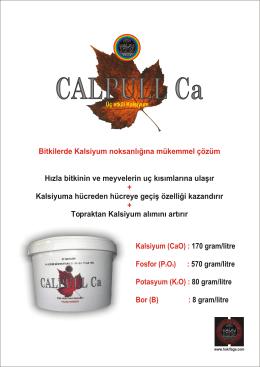 Calpull Ca