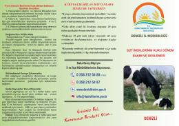 Süt İneklerinin Kuru Dönem Bakımı