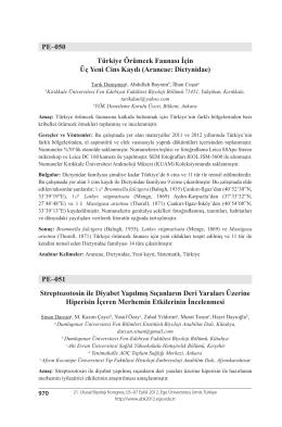 PE–050 Türkiye Örümcek Faunası İçin Üç Yeni Cins Kaydı (Araneae
