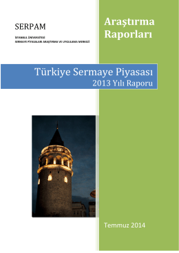 Türkiye Sermaye piyasası Raporu 2013