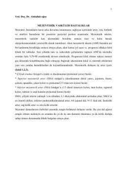 1 Yrd. Doç. Dr. Abdullah oğuz MEZENTERİK VASKÜLER