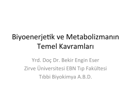 Biyoenerjetik-Fizyoterapi-10.12.2014