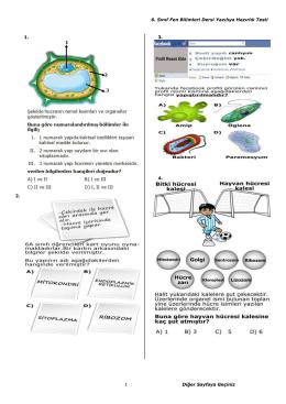 6. Sınıf Fen Bilimleri Dersi Yazılıya Hazırlık Testi 1 Diğer