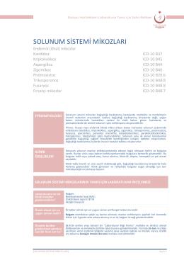 Solunum sistemi mikozları - Türkiye Halk Sağlığı Kurumu