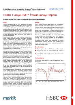HSBC Turkey Manufacturing PMI press release - Jun