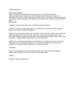 RUMEN ASİDOZU - Adana İli Damızlık Sığır Yetiştiricileri Birliği