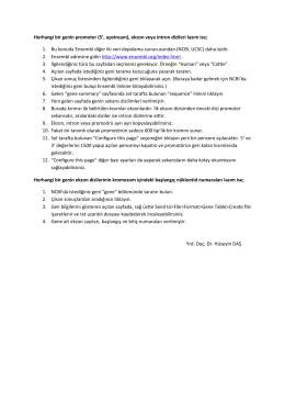 Promotor ve ekzon dizileri