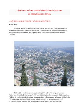 Gürcistan Raporu için Tıklayınız - Uluslararası Hasta Hizmetleri