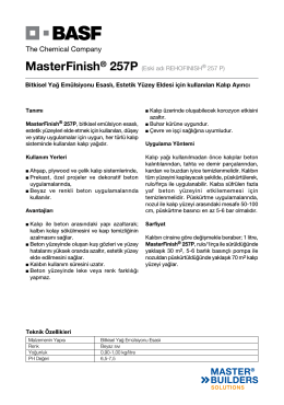 MasterFinish® 257P (Eski adı REHOFINISH® 257 P