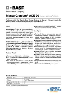 MasterGlenium® ACE 30 (Eski adı GLENIUM® ACE 30