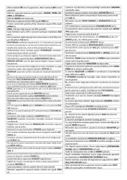 2014-2015 9.Sınıf 1.Dönem 2.Soru Örnekleri