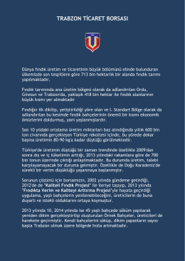 TRABZON TİCARET BORSASI - Trabzon Ticaret Borsası