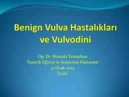 Vulvanın benign hastalıkları ve vulvodynia – Op. Dr. Mustafa