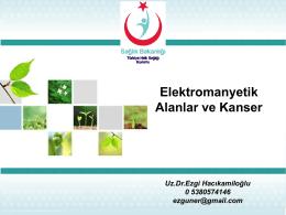 Elektromanyetik Alanlar ve Kanser.