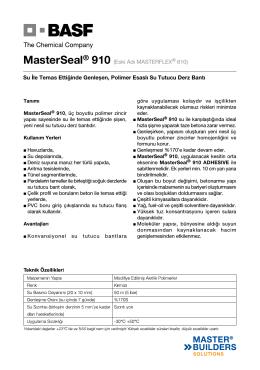 MasterSeal® 910 (Eski Adı MASTERFLEX® 610) Su İle
