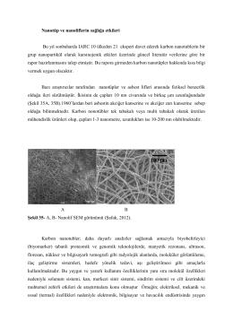 Nanotüp ve Nanoliflerin Sağlığa Etkileri