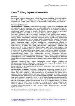 ZinnatTM 250mg Enjektabl Flakon IM/IV