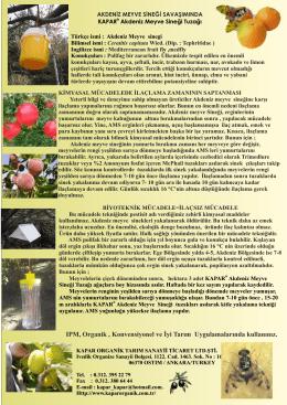 Akdeniz Meyve Sineği - Kapar Organik Tarım