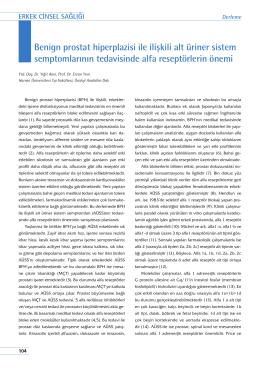 Benign prostat hiperplazisi ile ilişkili alt üriner sistem