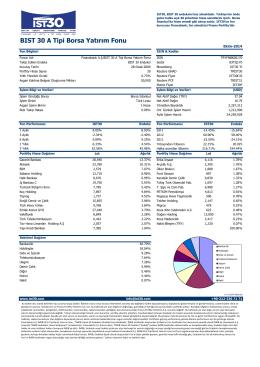 BIST 30 A Tipi Borsa Yatırım Fonu