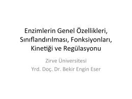 2 - Zirve Üniversitesi