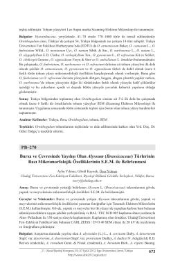 Brassicaceae - Biyoloji Kongreleri