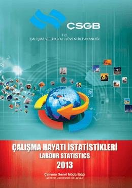 çalışma hayatı istatistikleri (2013)