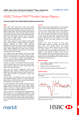 HSBC Turkey Manufacturing PMI press release - Jul 2014