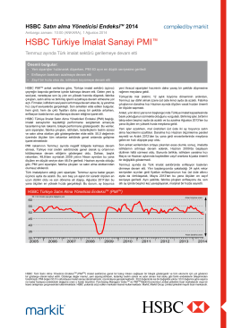 HSBC Turkey Manufacturing PMI report - Jul 2014