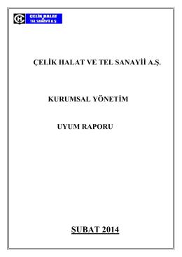 Kurumsal Yönetim İlkelerine Uyum Raporu(Şubat 2014)