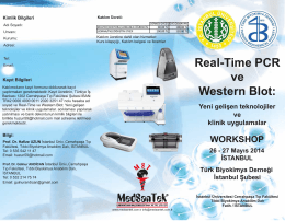 Real-Time PCR ve Western Blot: