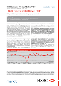 HSBC Turkey Manufacturing PMI report - February 2014