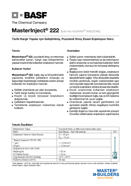 MasterInject® 222 (Eski Adı ALBARIA® INIEZIONE) Tarihi
