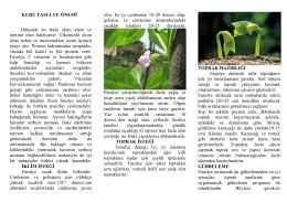 Kuru Fasülye Tarımı - Ankara İl Gıda Tarım ve Hayvancılık Müdürlüğü