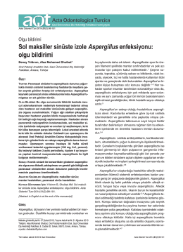 Sol maksiller sinüste izole Aspergillus