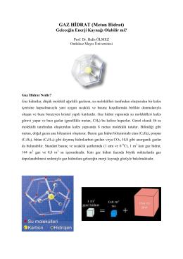 GAZ HİDRAT (Metan Hidrat)