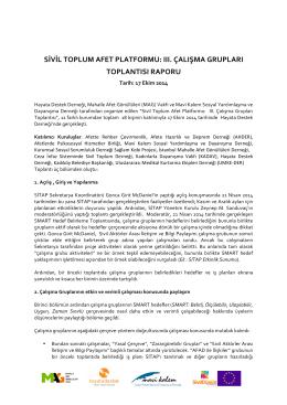 Ek Döküman SİTAP III. Çalışam Grubu Toplantısı Raporu