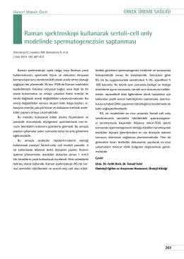 Raman spektroskopi kullanarak sertoli-cell only