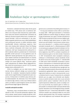 Anabolizan ilaçlar ve spermatogeneze etkileri