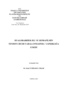 hyalobarrier jel ve seprafilmin tendon crush yaralanmasında
